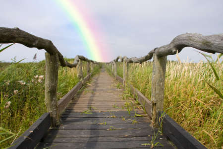 way to the rainbow