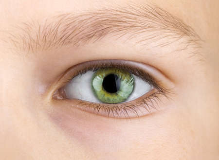 close up eyes: green eye of child