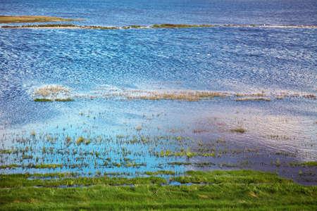 wadden sea: wadden sea