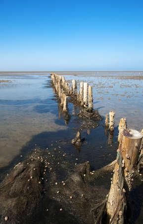 breakwater: espig?n de madera Foto de archivo
