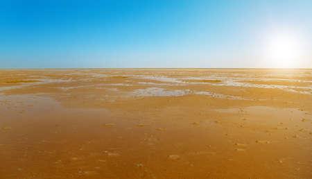 wadden sea: danish wadden sea national park