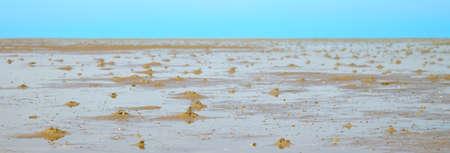 wadden: danish wadden sea national park