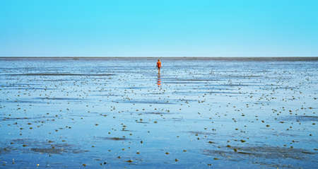child hiking in the wadden sea