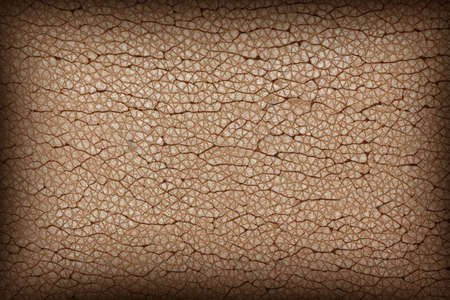 imitations: brown damaged synthetic leather texture