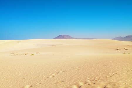 corralejo: sand dunes of Corralejo, Fuerteventura