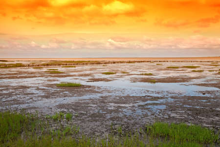 Danish wadden sea national park
