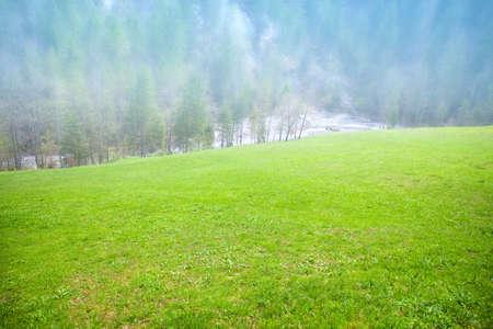 landscape in the Alps at springtime, Berchtesgadener Land, Bavaria