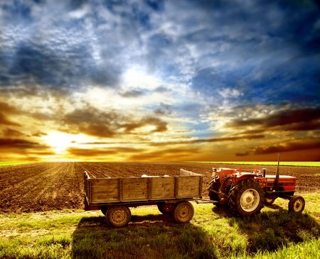 agriculture landscaped Stock Photo - 2809471