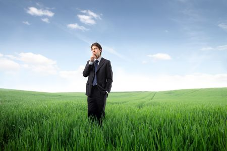 Businessman standing on a green meadow Stock Photo - 7083159