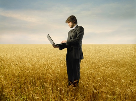 cornfield: Young businessman standing on a wheat field and using a laptop