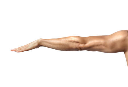 mans: Muscular mans arm