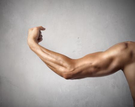 musculoso: Brazo del hombre musculoso Foto de archivo