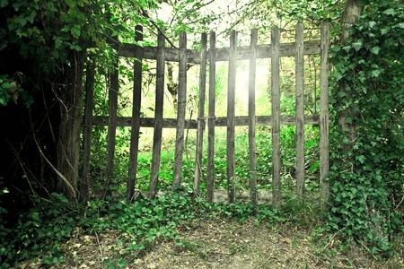 verjas: Puerta de madera en un jard�n