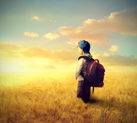 School boy on a wheat field photo