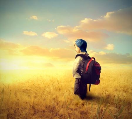 backpack: School boy on a wheat field Stock Photo