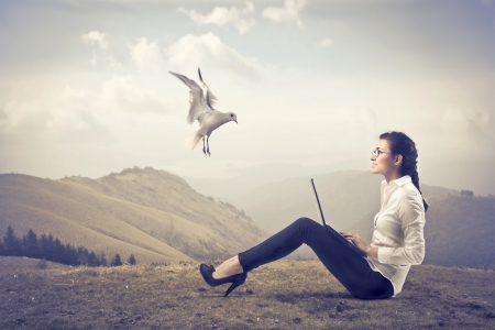 freedom woman: Smiling businesswoman sitting on a hill and using a laptop with seagull flying beside her Stock Photo
