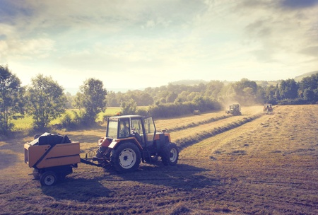 hay field: Tractor on a cultivated field
