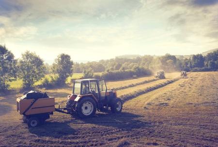 traktor: Traktor auf einem bebauten Feld Lizenzfreie Bilder