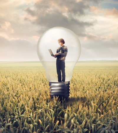 cornfield: Young man in a light bulb on a wheat field using a laptop Stock Photo