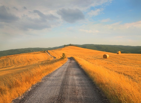 rick: Long road of countryside Stock Photo