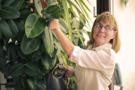 Mujer que hace la jardinería Foto de archivo - 59291134