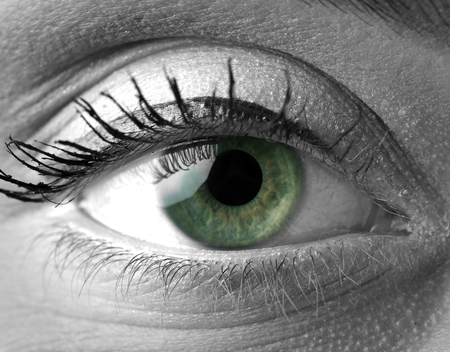 yeux verts Superbe