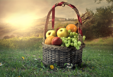 pic nic: Basket full of tasty fruit Stock Photo