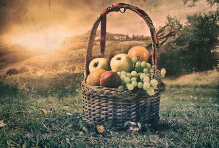 pic nic: Basket full of fruit