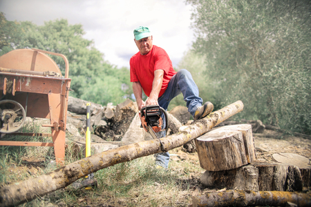 man cutting a trunk in the countryside Stock Photo