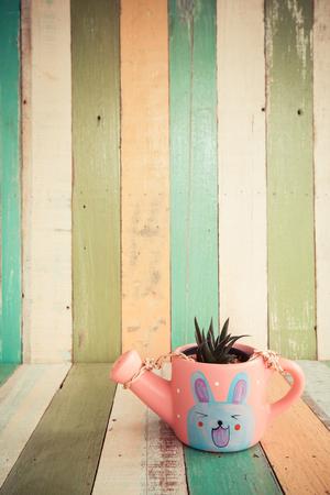 screened: cactus flowers in vase on retro vintage background design