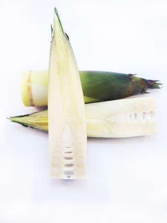 Bamboo shoots on white background Reklamní fotografie