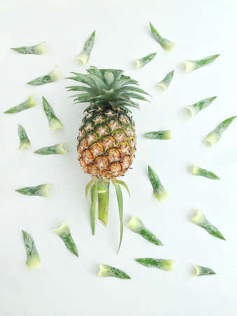 pineapple  and leaves
