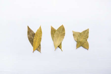 Dried bay leaves on white wooden background.