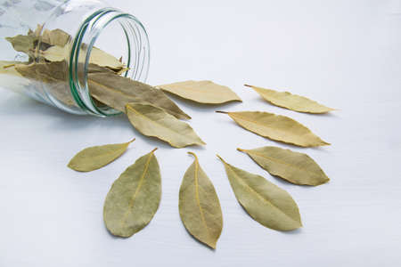 Dried bay leaves in glass jar on white wooden background.