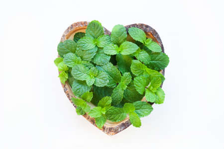 Fresh  Mint in wooden dish heart shape on white .