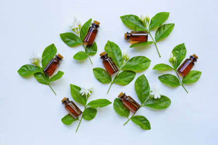 Bottle of essential oil with jasmine flower and leaves on white background. Imagens
