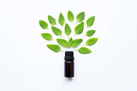 Essential oil with fresh mint leaves on white background. Stock fotó