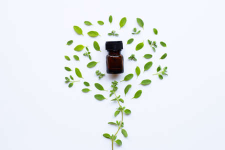Top view. Bottle of essential oil with marjoram on white background Zdjęcie Seryjne