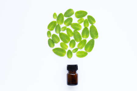 Essential oil with fresh apple mint leaves on white  background.