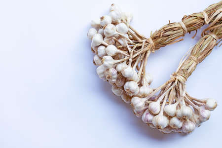 Garlic on a white background.