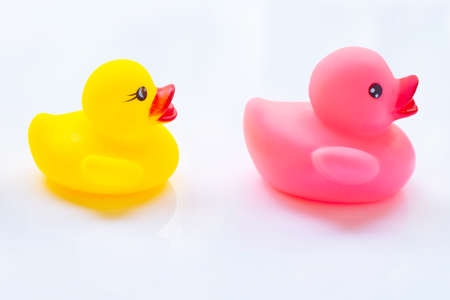 Pink and yellow duck toys on a white background.