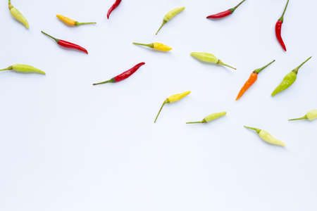 Chili peppers on white background. Copy space