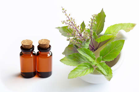 Essential oil with holy basil leaves in porcelain mortar on white background