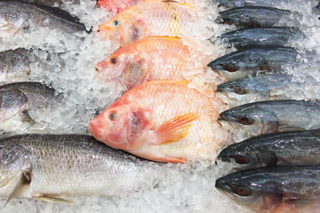 Fresh fish on ice shelf at market. Stock Photo