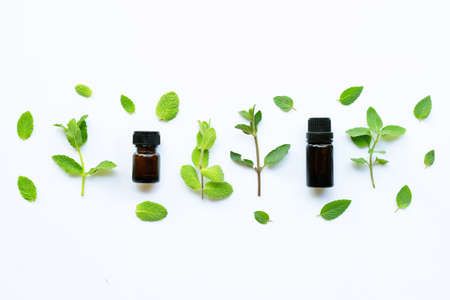 Essential oil with fresh mint leaves on white background.