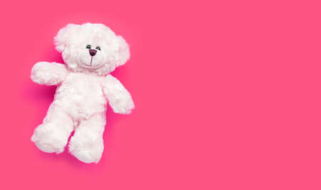 Toy white bear on pink background. Copy space