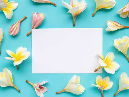 White paper surrounded with Plumeria or frangipani flower on blue background. Top view Imagens