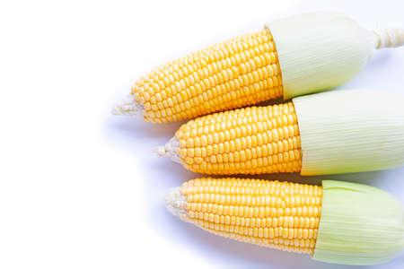 Maïs frais sur fond blanc.