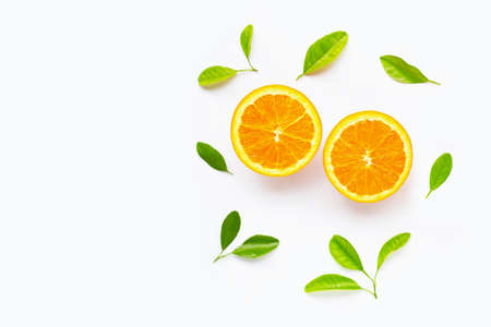 Fresh orange citrus fruit with leaves isolated on white background. Copy space