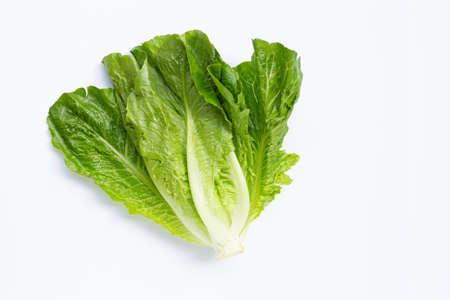 Fresh romaine lettuce on white background.